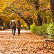 Planes para el otoño en Madrid